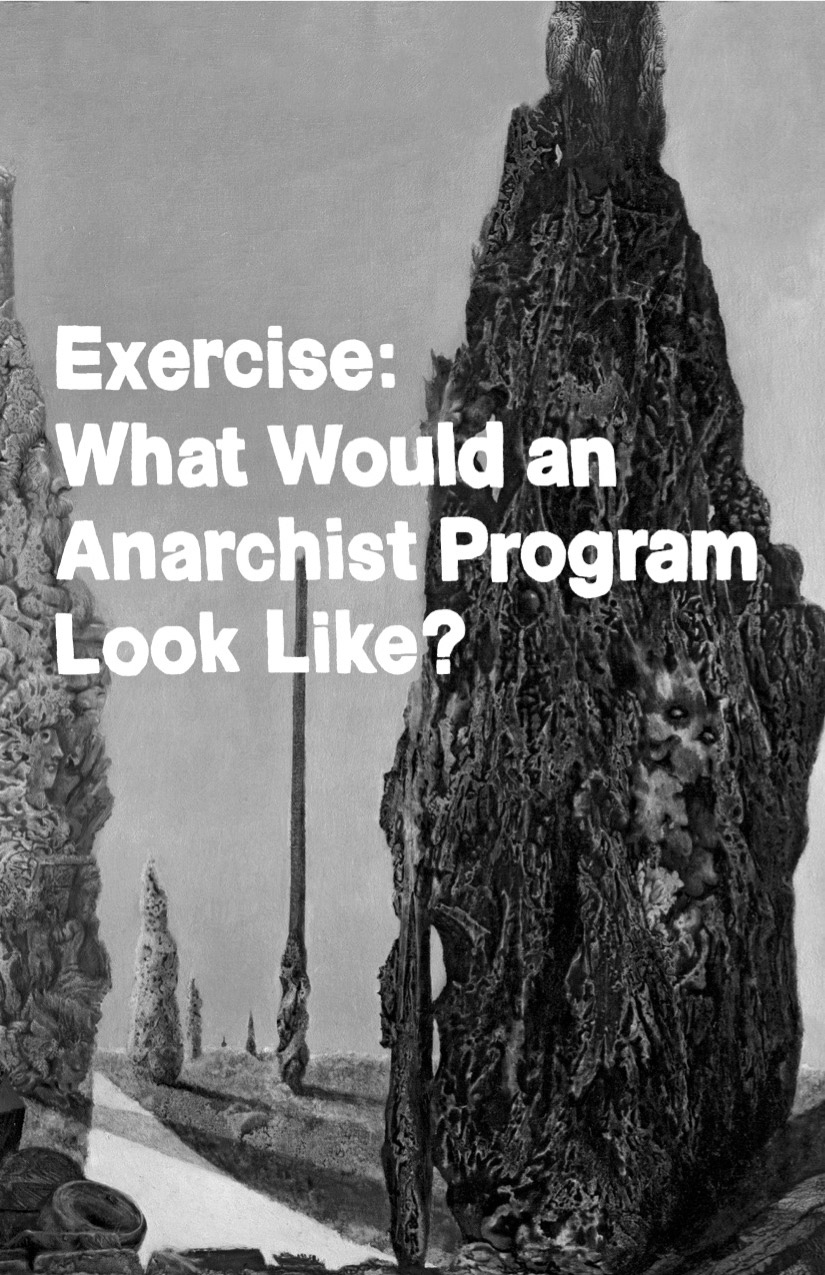 Photo of 'Exercise: What Would an Anarchist Program Look Like?' front cover